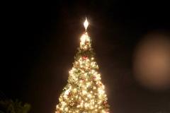 machine-christmas-by-the-sea-201211