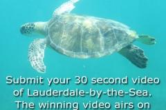 ScubaNation-Video-Contest