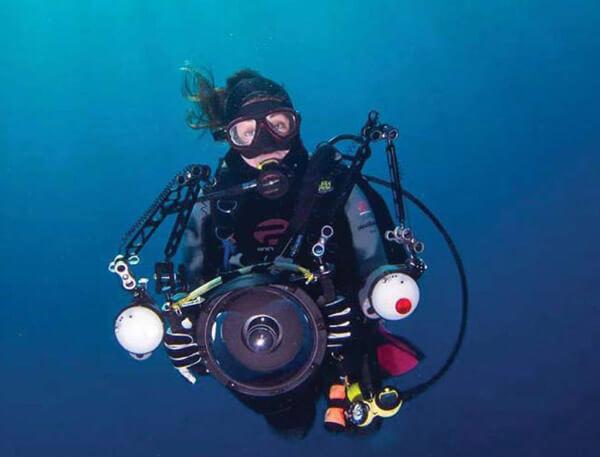 Bugfest Diver