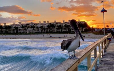 Lauderdale-By-The-Sea Featured in Travel Weekly