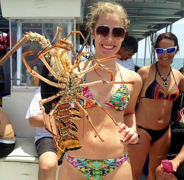 Bugfest Lobster Catches